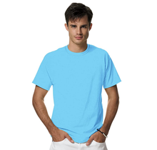 Hanes Men's X-Temp Crewneck Short-Sleeve T-Shirt 4200 | Blue Horizon