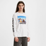 Levi's Men's Relaxed Long Sleeve Graphic Tee 16139-0005