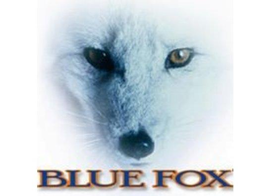 Blue Fox (Rapala)