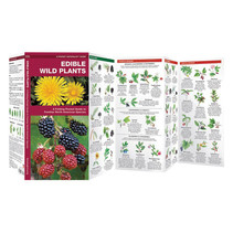 EDIBLE WILD PLANTS pocket guide (EDIBLE WILD PLANTS)