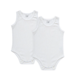 Petit Clair Petit Clair Baby Bodysuit BDS4-SET2