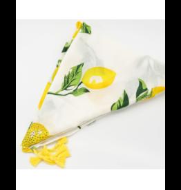 Ana and  Ava Ana and Ava Lemons to Lemonade Tichel