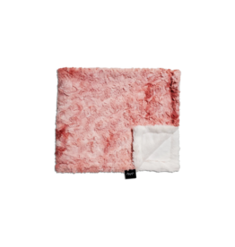 Winx and Blinx Winx and Blinx Coral Crush Minky Blanket
