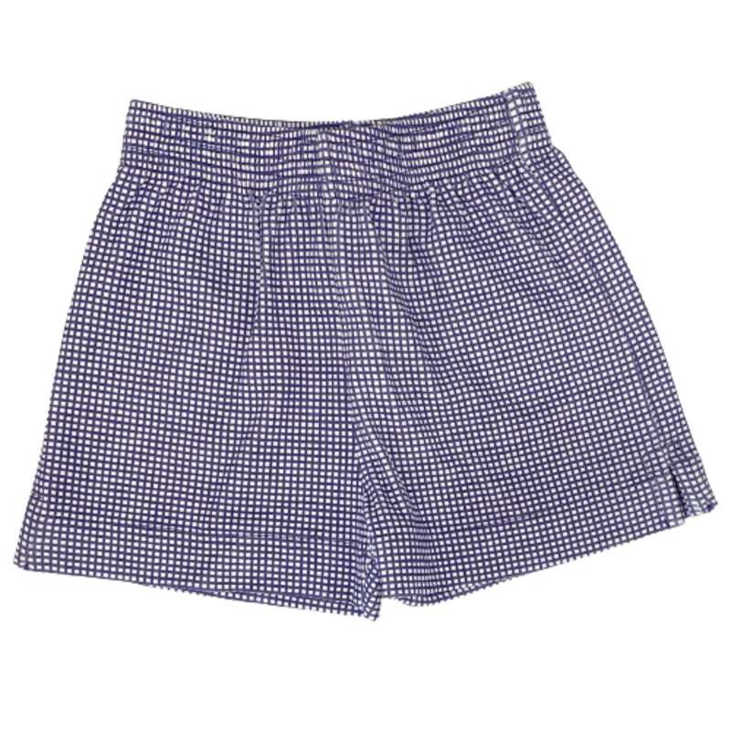Luigi Luigi Boys Navy Gingham Shorts