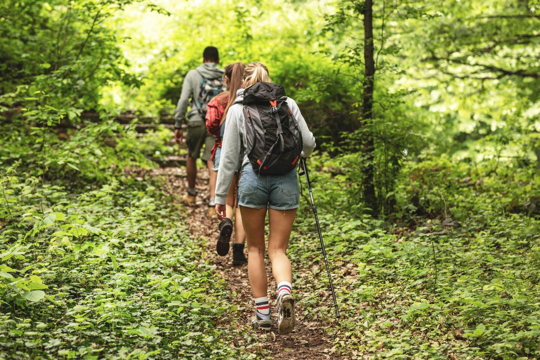 two people hiking in a green forest wearing shorts - spring weather