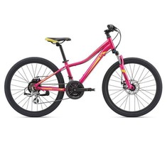 Giant Enchant 1 24 Disc Magenta