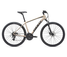 Giant 2020 Roam 4 Disc - Light Tan
