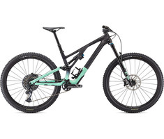 Specialized 2021 Stumpjumper Evo Expert