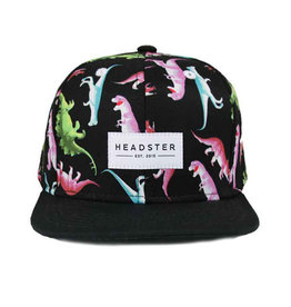 Headster kids Casquette Dino