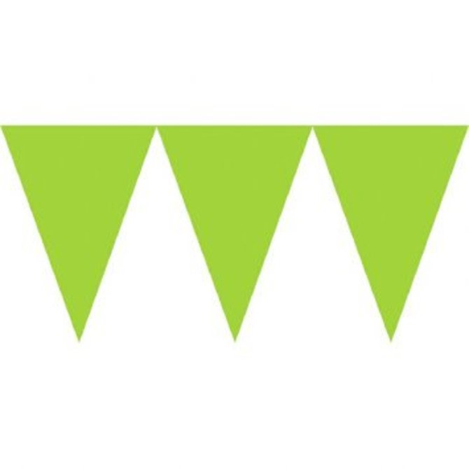 Pennant Banner Paper Kiwi Pop Party Supply