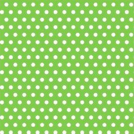 Polka Dot - Kiwi Printed Jumbo Gift Wrap