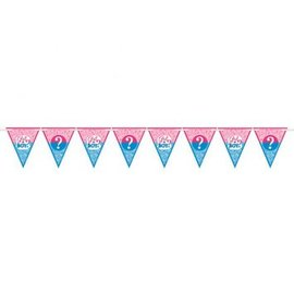 Girl or Boy? Paper Pennant Banner