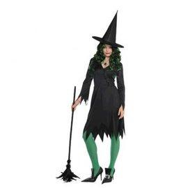 Womens Wicked Witch - Standard