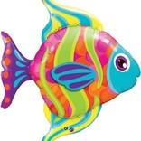 "Fashionable Fish Balloon, 43"""