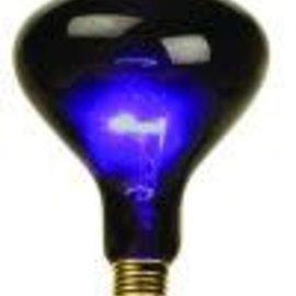 100 Watt Mushroom Blacklight Bulb