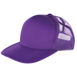 Purple Baseball Hat