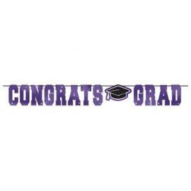 School Colors Large Foil Letter Banner - Purple 12'