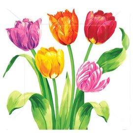 Bright Tulips Square Plates