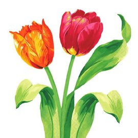 Bright Tulips Beverage Napkins