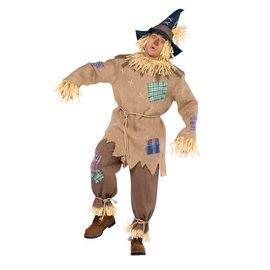 Adult Mr. Scarecrow