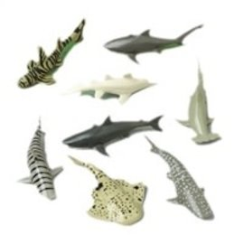 Sharks, 12ct