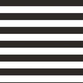 "Black and White Stripe Photo Backdrop, 72"" x 54"""