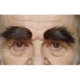 Bushy Eyebrows- Dark Brown