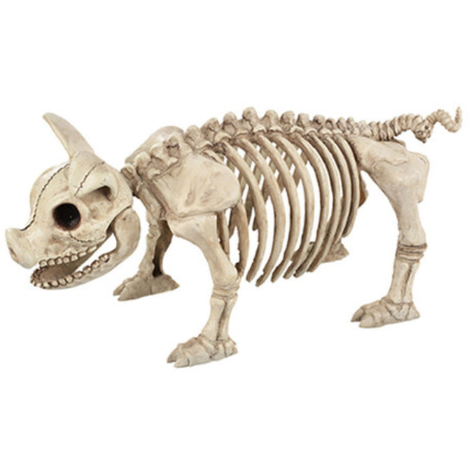 "Standing Pig Skeleton, 14"""