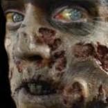 Zombie Rot – 3D FX Transfers