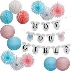 Gender Reveal Garland Kit