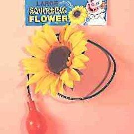 "Squirt Flower- 6"""