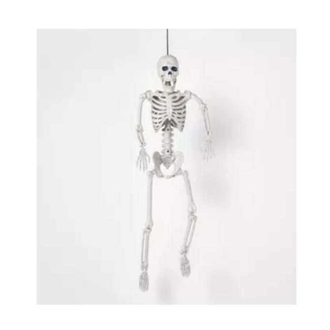 """24"""" Posable Skeleton"""