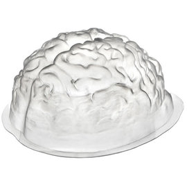 Brain Shaped Mold