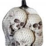 Bag of 6 Skulls