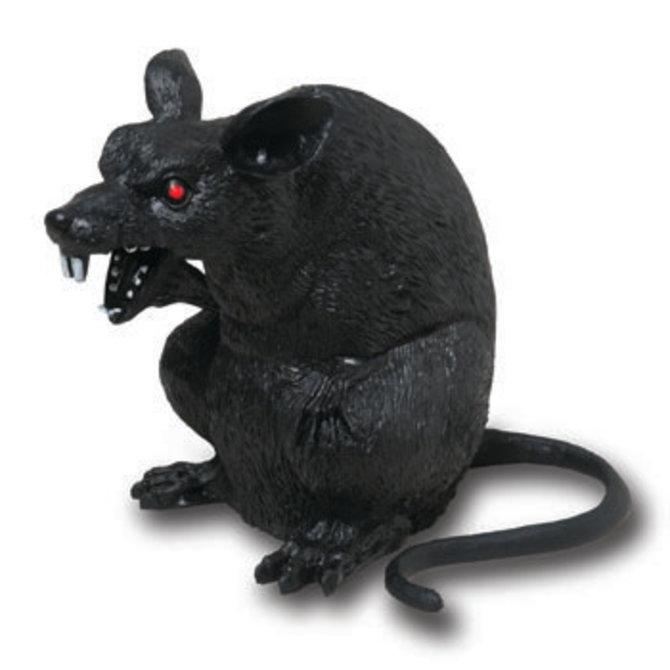 """Black Rat- 6.5"""""""