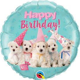 "Studio Pets - Birthday Puppies - 18"""