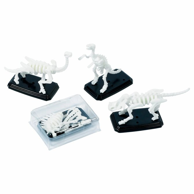 3-D Fossil Puzzles -12ct