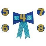 Add-an-Age 4-9 Birthday Boy Award Ribbon
