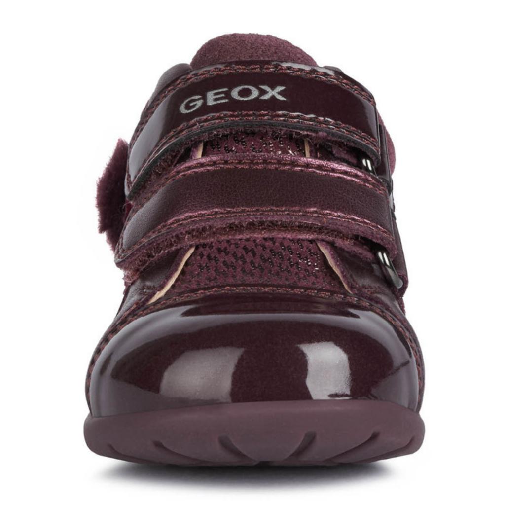 Geox Geox B Kaytan Prune (B0451B)