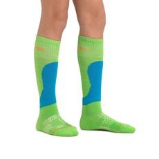 Darn Tough Darn Tough Fall Line Jr Sock Green