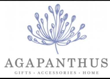 Custom Agapanthus