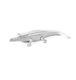White Alligator - Large