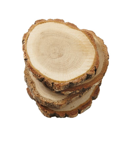 Wood Slice Bark Coaster Set