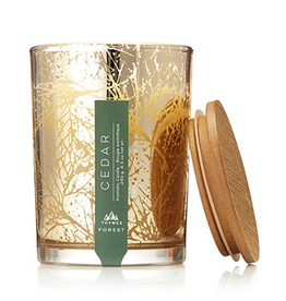 Thymes Forest Cedar Candle - 8.5 oz