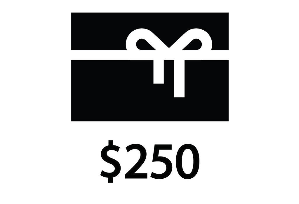 NYC Velo NYC Velo Gift Certificate $250.00