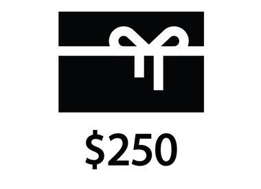 NYC Velo NYX Velo Gift Certificate $250.00