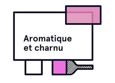 Aromatique et Charnu
