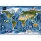 Heye PZ2000 Satellite map, Map Art