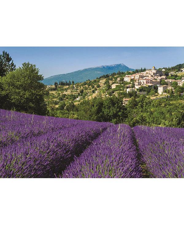 PZ500 Provence, Aurel