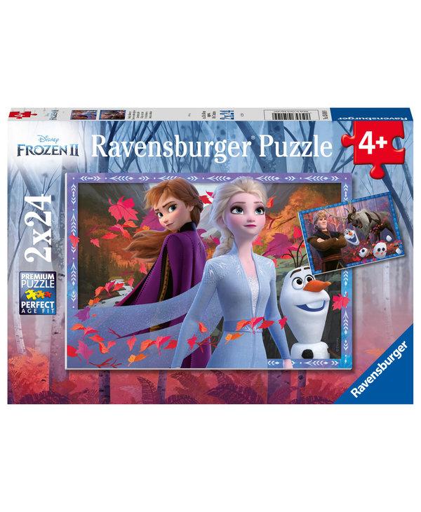PZ2x24 Frosty Adventures